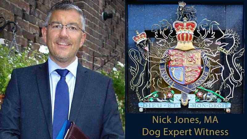 nick-jones-ma-dog-expert-witness-new